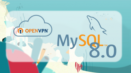 Using OpenVPN with MySQL Database Service